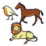 Otros animales